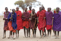 Masai men. With traditional dress, necklace and earrings outside the village during the welcome ceremony. The Masai are a Nilotic ethnic group of semi-nomadic royalty free stock images