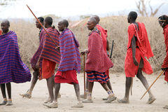 Masai men Stock Photography