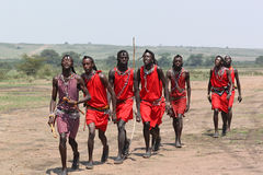 Masai Men Dance. The Masai welcome dance, danced only by men, dressed with red clothes and colorful necklace and bracelet Royalty Free Stock Images