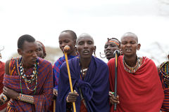 Masai men portrait Royalty Free Stock Photography
