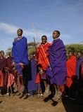 Masai performing warrior dance. Stock Images