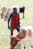 Masai shepherd Stock Images