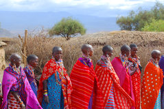 Masai tribe. AMBOSELI, KENYA - OCT 13: Group of unidentified African people from Masai tribe prepare to show a traditional Jump dance on Oct 13, 2011 in Masai Royalty Free Stock Photo