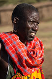 Masai tribesman with large hole in earlobe. A Masai tribesman has a large hole in his right earlobe. He is wearing a blue and red check cloth around his stock image