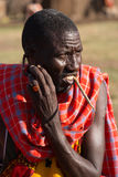 Masai tribesman shows off earlobe hole. A Masai tribesman shows off the hole in his earlobe by pulling the flap of skin with his fingers. He has a stick in his royalty free stock image