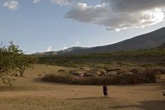 Masai village 001. Main view Royalty Free Stock Photo