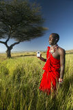 Masai Warrior near Acacia Tree listening to music on iPod by Apple in red surveying landscape of Lewa Conservancy, Kenya Africa Stock Photography