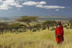 Masai Warrior in red surveying landscape of Lewa Conservancy, Kenya Africa Stock Images