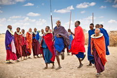 Masai warriors dancing traditional jumps as cultural ceremony, T