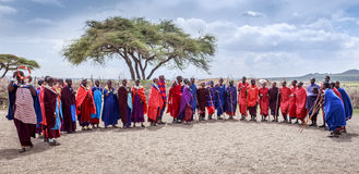 Masai welcome dance Royalty Free Stock Photo