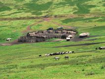Masai wioska Obrazy Stock