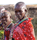 Masai woman. Two Masai woman with traditional necklace and tattoo on the face. In traditional cloth Royalty Free Stock Images