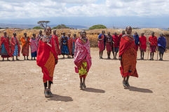 Masai Women. Women from one of the Masai tribes in Kenya taking part in a traditional jumping dance Royalty Free Stock Photography