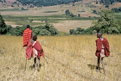 Masai youths walk downhill in Rift Valley. Kenya, Masai Mara, Serengeti: Maasai youth on the move in their natural habitat,  environment, in nature reserve Stock Images