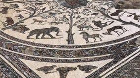 Masaic av det romerska forntida fördärvar av den Volubilis staden i Unesco, Marocko arkivfilmer