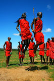 Masaikrieger, der traditionellen Tanz tanzt Lizenzfreie Stockfotografie