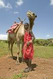 Masaikrigaren i traditionell röd toga poserar framme av hans kamel på Lewa djurlivnaturvård i norr Kenya, Afrika Royaltyfria Bilder