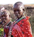 Masaikvinna royaltyfria bilder