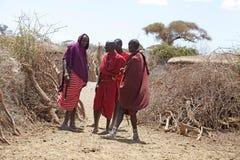 masaimän Arkivbilder