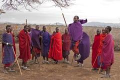 MasaiMara banhoppning Arkivbilder