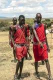 MasaiMara gå Fotografering för Bildbyråer