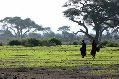 Masais Fotos de archivo libres de regalías