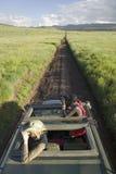 Masais kundschaften und Tourist suchen nach Tieren von einem Landcruiser während eines Spiel-Antriebs an der Erhaltung Lewa-wild  stockfotos