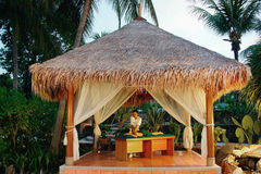 Masaje en balneario tropical.