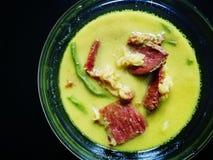 Masak lemak daging的salai抽了在椰奶烹调的牛肉 库存照片