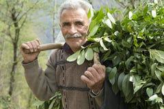 Masal IRAN, Marzec, - 24, 2016: Portret Taleshi poganiacz bydła Zdjęcia Royalty Free
