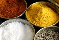 被分类的配件箱调味品masala香料 图库摄影