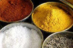 Masala Assorted Condiments and Spices Box Stock Photography