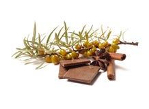 Masala chai choklad med kryddor och stjärnaanis, kanelbrun pinne, pepparkorn, på säcken och träbakgrund Royaltyfri Fotografi