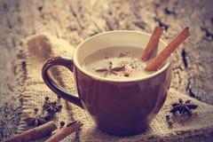 Masala chai te med kryddor och stjärnaanis, kanelbrun pinne, pepparkorn arkivfoton