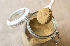 Masala di Garam in cucchiaio Immagine Stock Libera da Diritti
