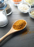 Masala Powder and Other Ingredient Royalty Free Stock Photos