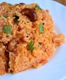 Masala rice Royalty Free Stock Photo