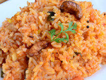 Masala rice spicy rice Royalty Free Stock Image