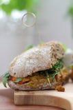Masala sandwich. Royalty Free Stock Photos