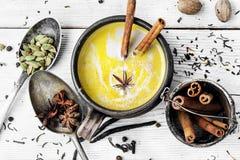 Masala tea hot Indian with milk Royalty Free Stock Image