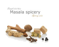 Masala tea spices Stock Image