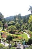 Masarka ogród Obrazy Royalty Free