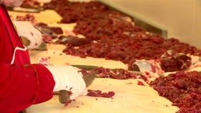Masarki cią mięso zbiory