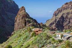 Masca山村。 特内里费岛,西班牙 库存照片