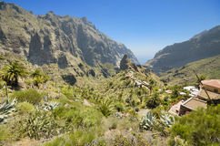 Masca canyon in Tenerife, Canary islands, Spain. Stock Photography