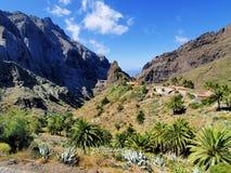 Masca, Tenerife Zdjęcia Royalty Free