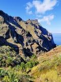 Masca, Tenerife Zdjęcie Stock