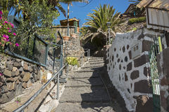 Masca viaalge on Tenerife Stock Images