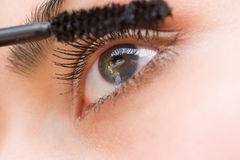 Mascara Royalty Free Stock Image