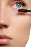 Mascara appliquant le plan rapproché, longues mèches Prolongements de cils image libre de droits